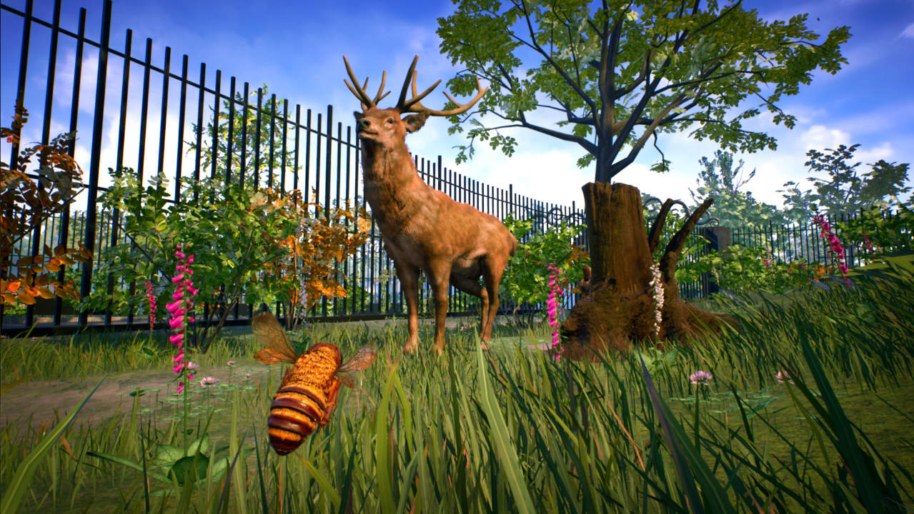Bee Simulator - Varsav Game Studios - Nacon - Blacknut Cloud Gaming